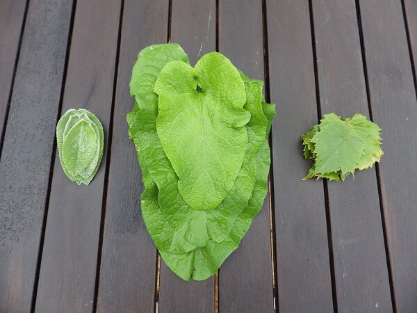 Leaf Alternatives and Stacking