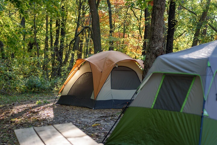 Tents In The Woods On A Fall Morning