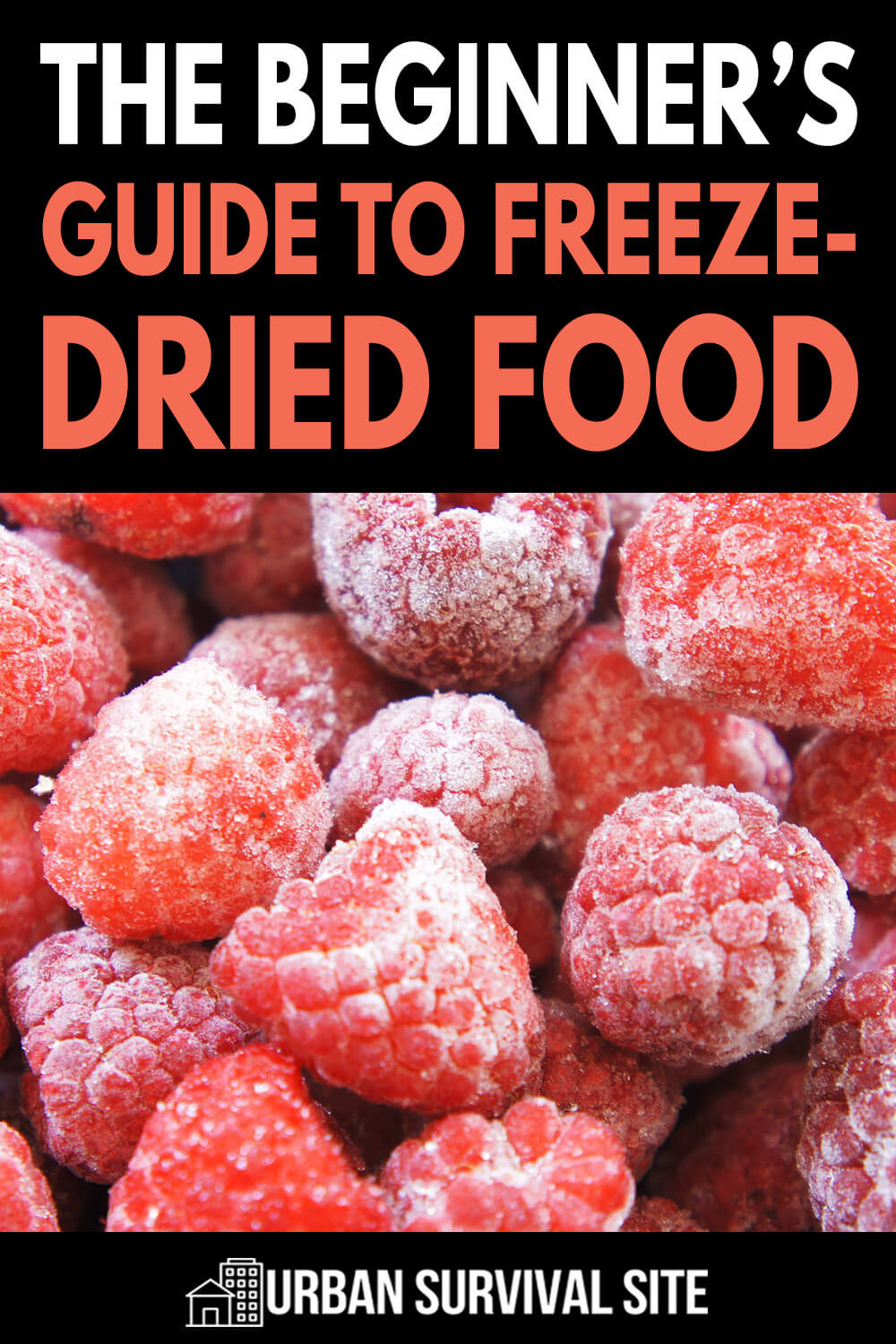 The Beginner's Guide to Freeze-Dried Food