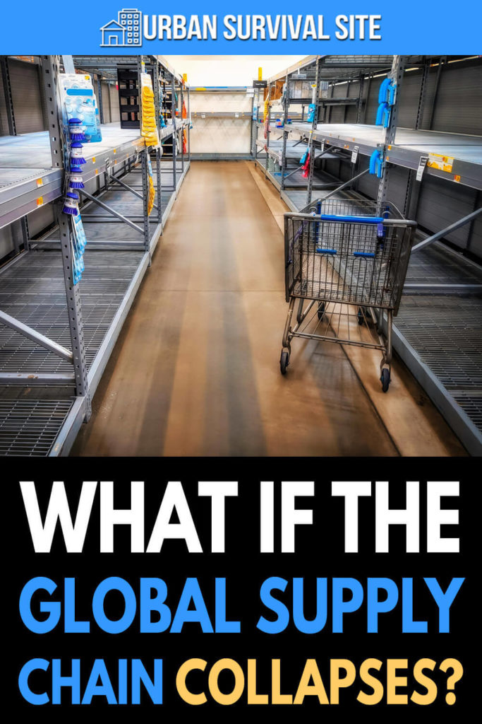What If The Global Supply Chain Collapses?