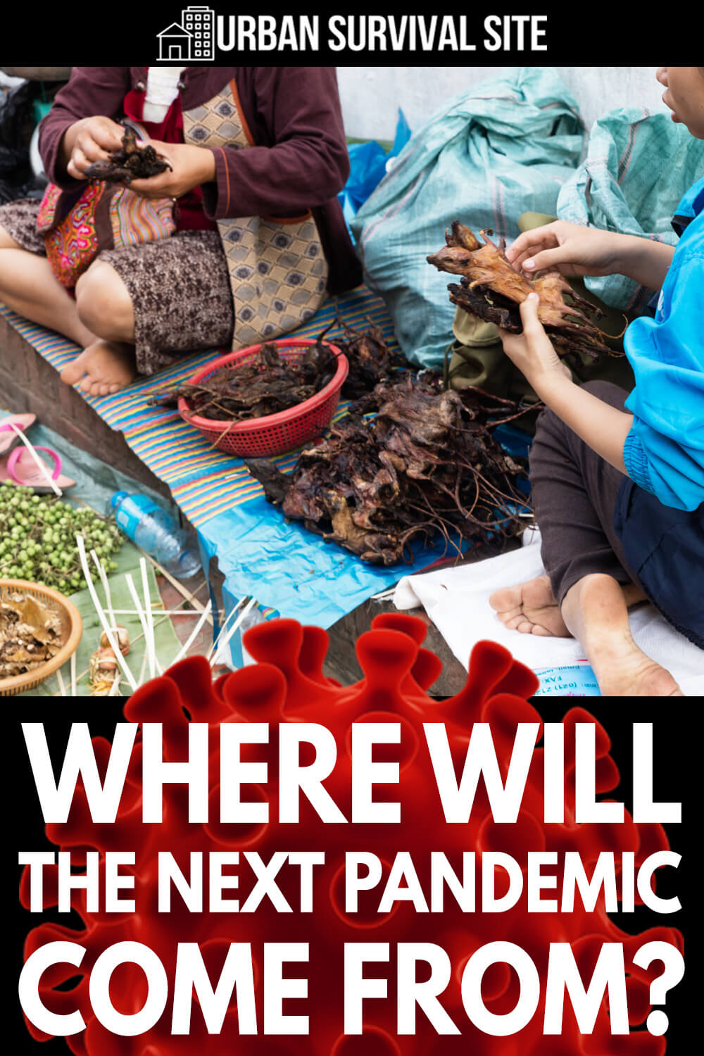 Where Will The Next Pandemic Come From?