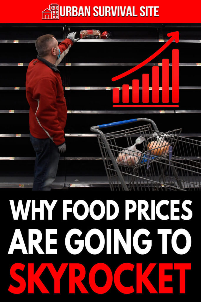 Why Food Prices Are Going To Skyrocket
